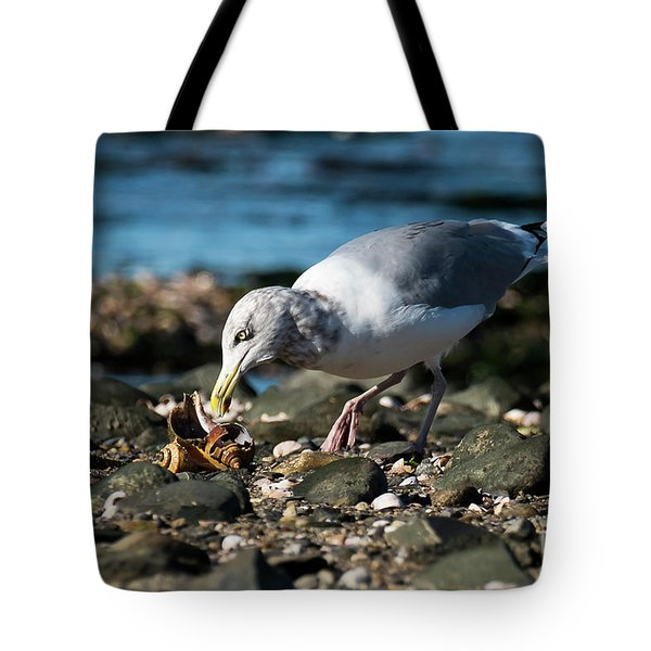 Tote Bag featuring the photograph Seagull With Snail by Michael D Miller