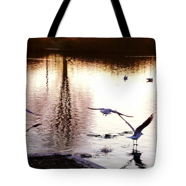 Seagulls In The Morning Tote Bag
