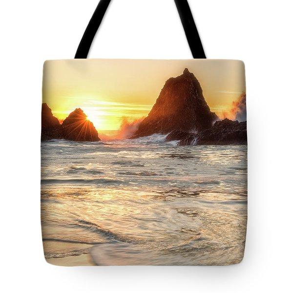 Seal Rock  Tote Bag