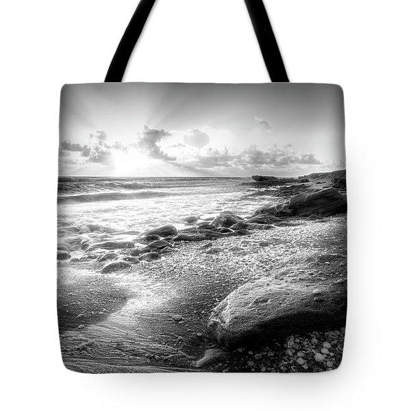 Seashells On The Seashore In Black And White Tote Bag