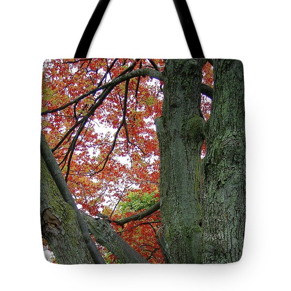 Seeing Autumn Tote Bag