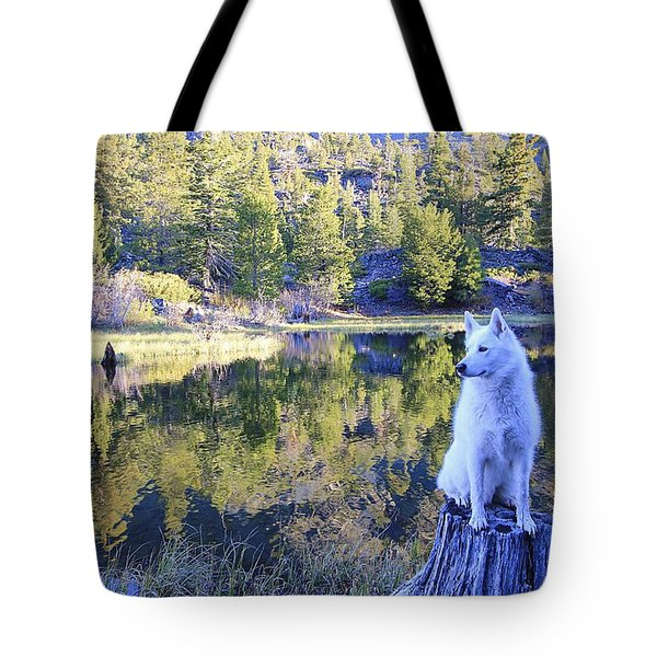 Tote Bag featuring the photograph Sekani Throne  by Sean Sarsfield
