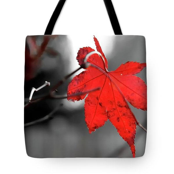 Tote Bag featuring the photograph Selective Red Maple Leaf by Jerry Sodorff