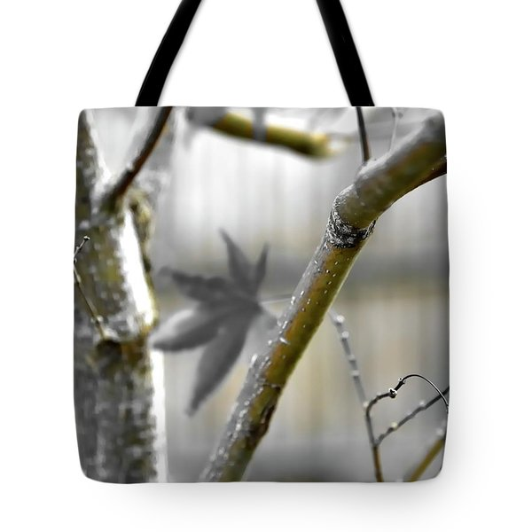 Tote Bag featuring the photograph Serene Fall by Jerry Sodorff