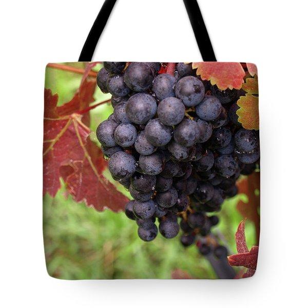 Shalestone - 1 Tote Bag