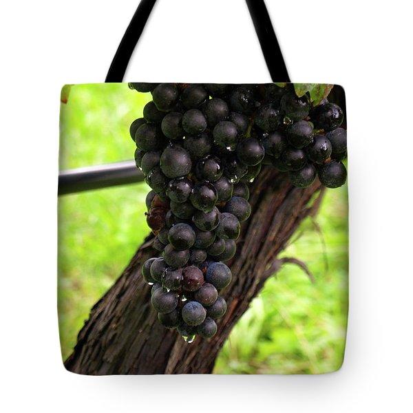 Shalestone - 11 Tote Bag