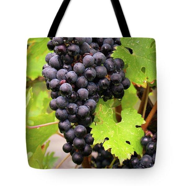 Shalestone - 12 Tote Bag