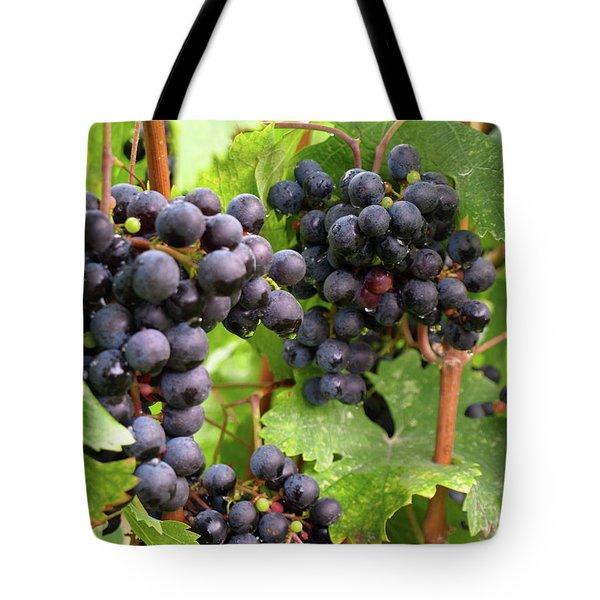 Shalestone - 13 Tote Bag