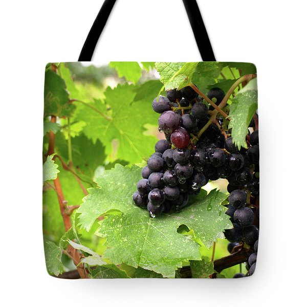Shalestone - 14 Tote Bag