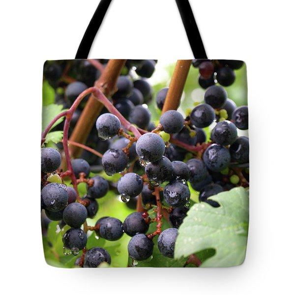 Shalestone - 15 Tote Bag