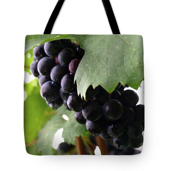 Shalestone - 16 Tote Bag