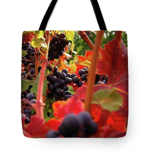 Shalestone - 3 Tote Bag