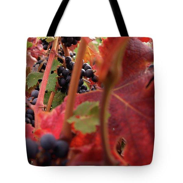 Shalestone - 4 Tote Bag