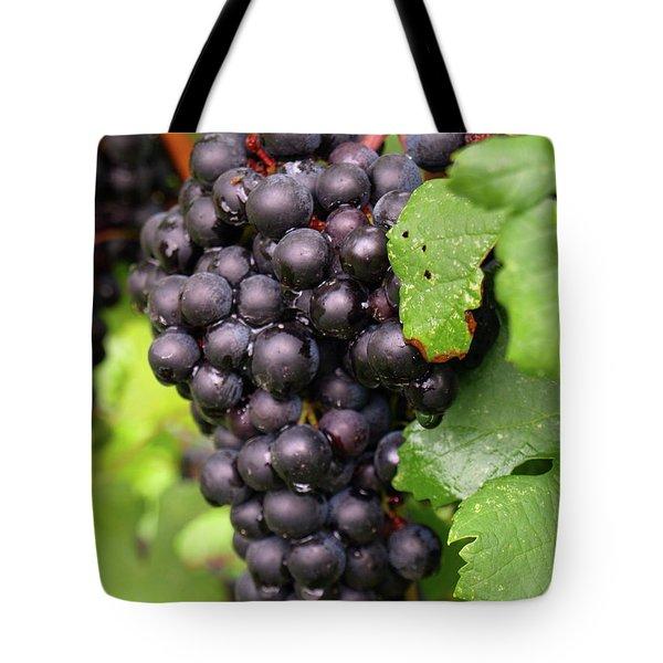 Shalestone - 6 Tote Bag