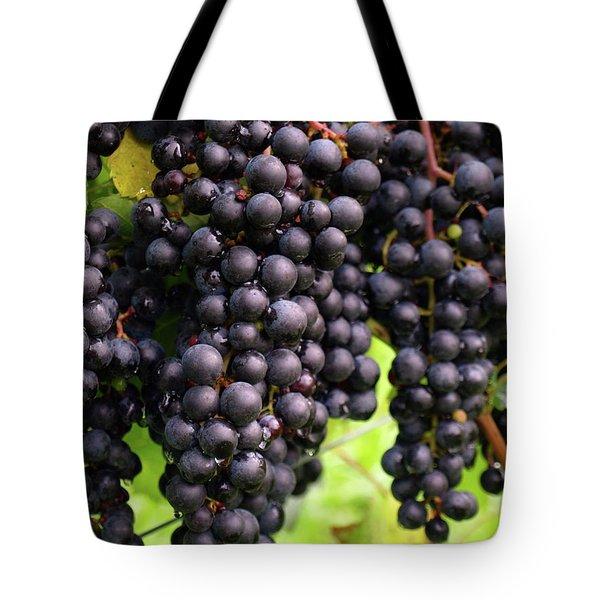Shalestone - 7 Tote Bag