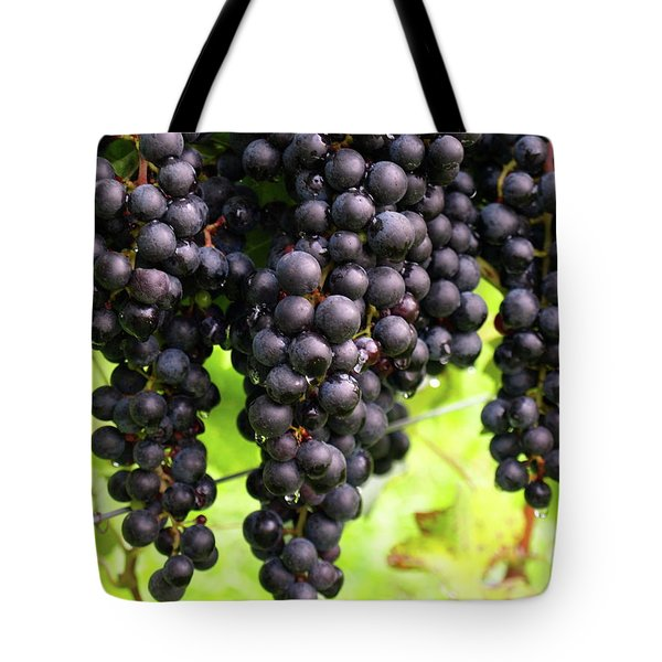 Shalestone - 8 Tote Bag