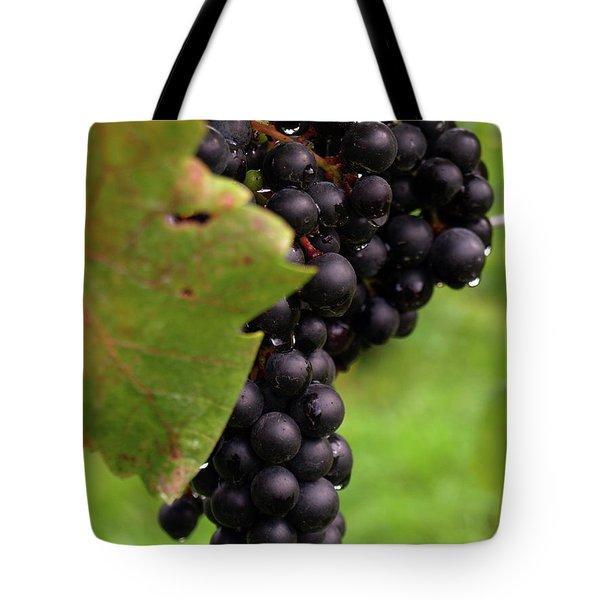 Shalestone - 9 Tote Bag