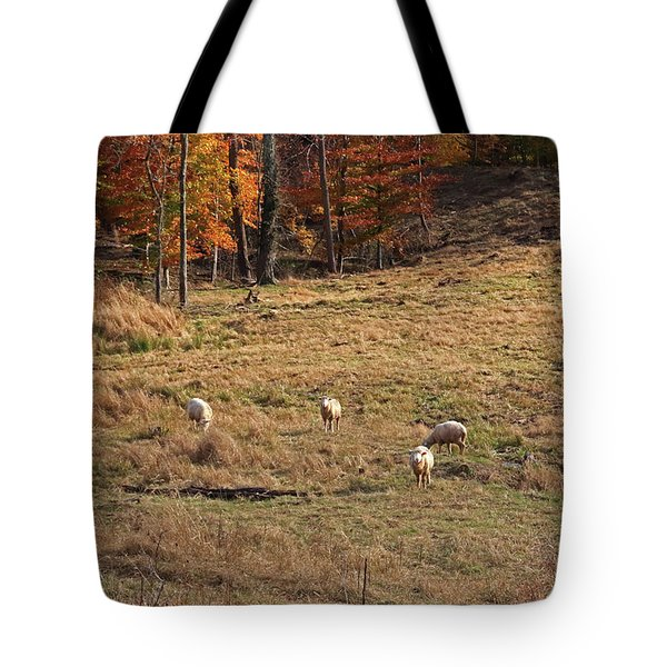 Tote Bag featuring the photograph Sheep In A Field by Angela Murdock