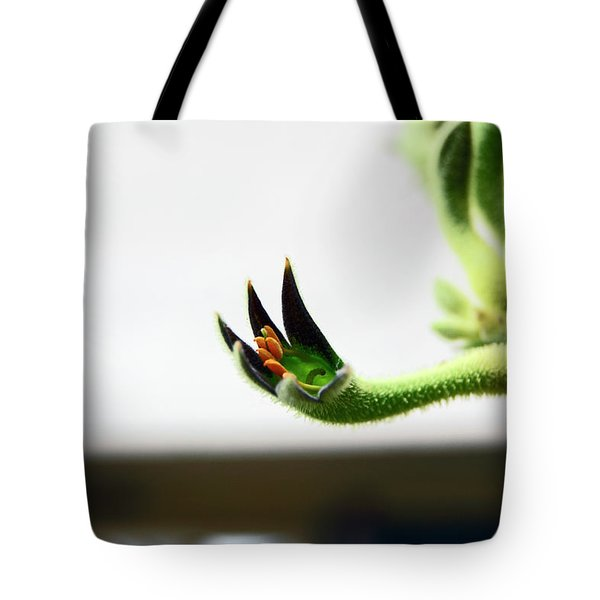 Sheffield. The Botanical Gardens Pavillions Tote Bag