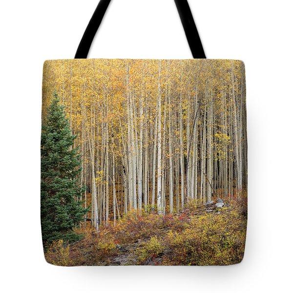 Shimmering Aspens Tote Bag