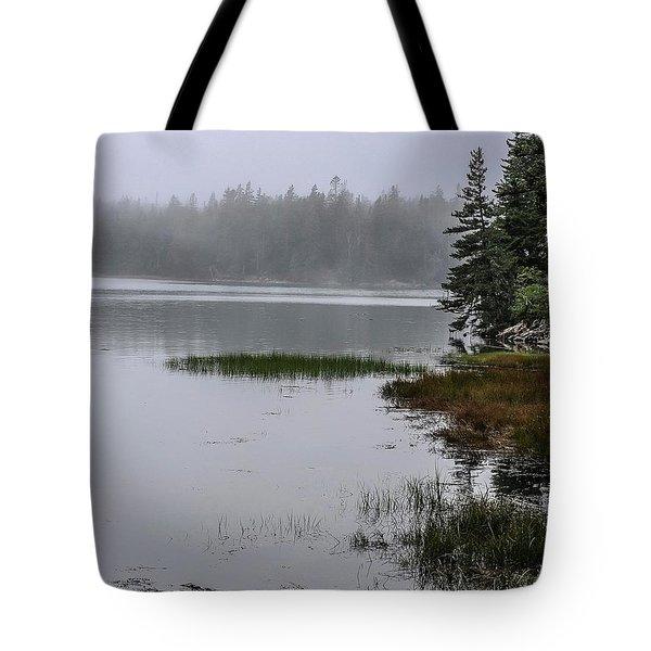 Ship Harbor Nature Trail, Acadia National Park Tote Bag