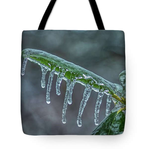 Tote Bag featuring the photograph Shiver Me Timbers by Meta Gatschenberger