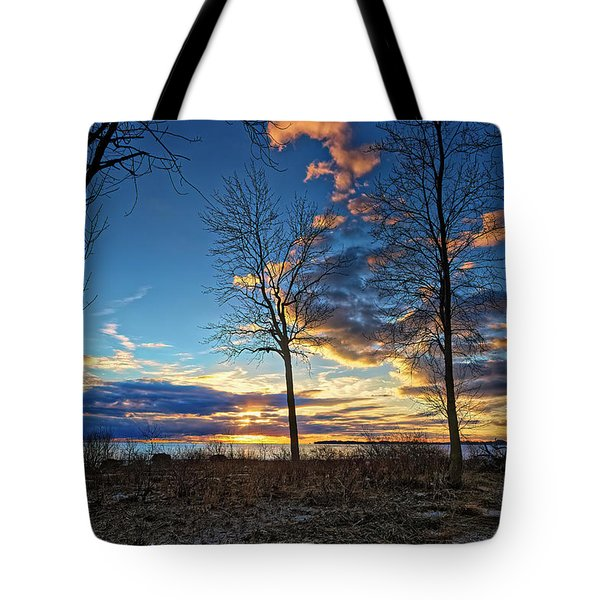 Shoreline Views Tote Bag