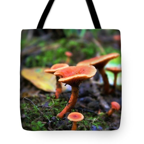 Tote Bag featuring the photograph Shrooms by Candice Trimble