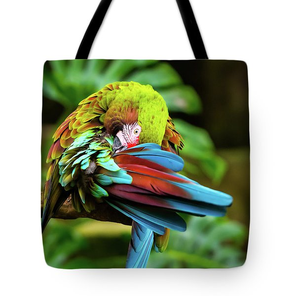 Tote Bag featuring the photograph Shy Parrot by Dheeraj Mutha