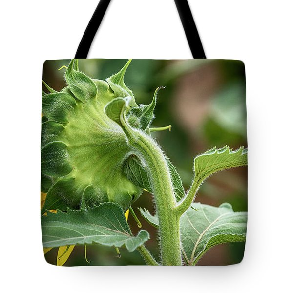Shy Sunflower  Tote Bag