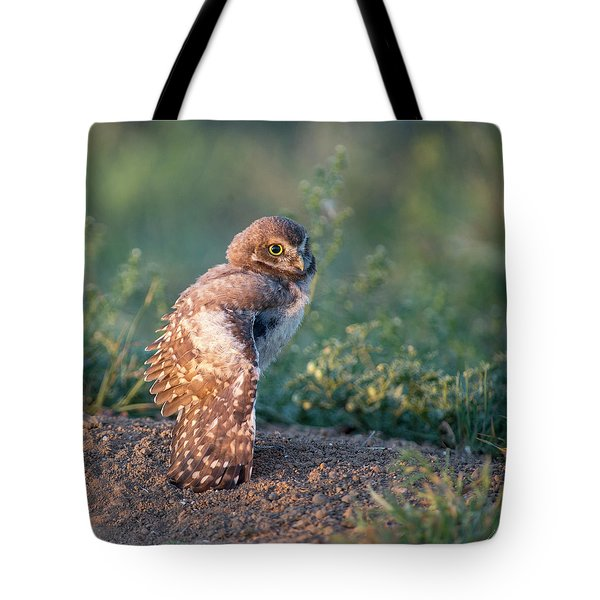 Shy Young Burrowing Owl Tote Bag