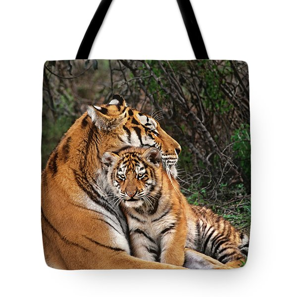 Siberian Tiger Mother And Cub Endangered Species Wildlife Rescue Tote Bag
