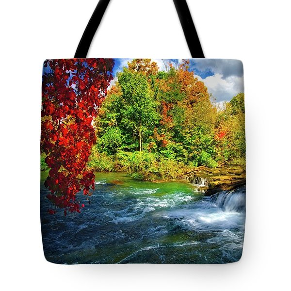 Tote Bag featuring the photograph Sidelined Beauty by Lynn Bauer