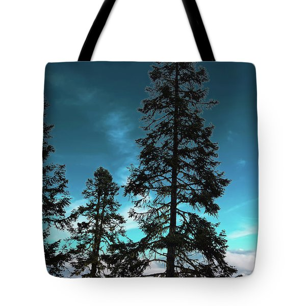 Silhouette Of Tall Conifers In Autumn Tote Bag