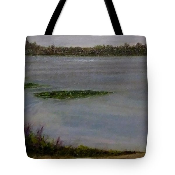 Tote Bag featuring the painting Silver Lake During The Wildfires by J Reynolds Dail
