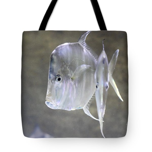 Silvery Lookdowns Tote Bag
