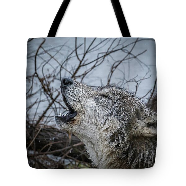 Singing The Song Of My People Tote Bag
