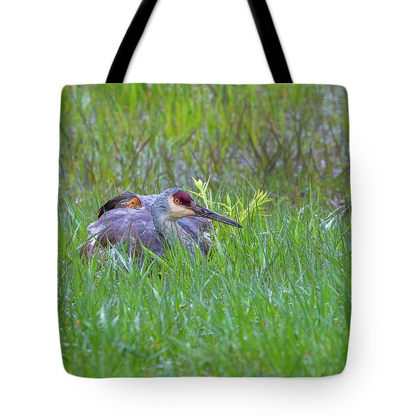 Single For Now  Tote Bag