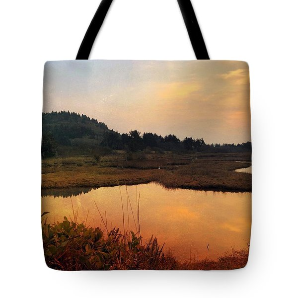 Tote Bag featuring the digital art Sitka Sedge Sand Lake Eve by Chriss Pagani