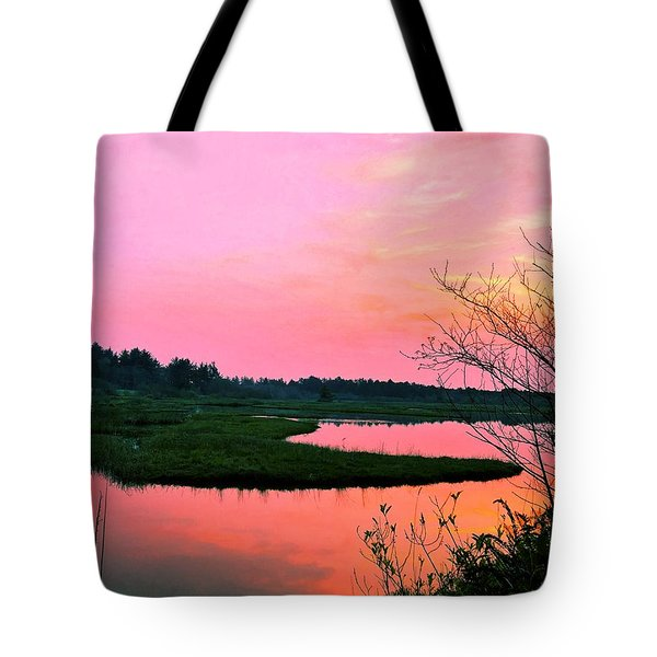 Tote Bag featuring the photograph Sitka Sedge Sunset by Chriss Pagani