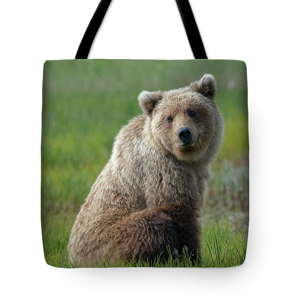 Sitting Peacefully Tote Bag