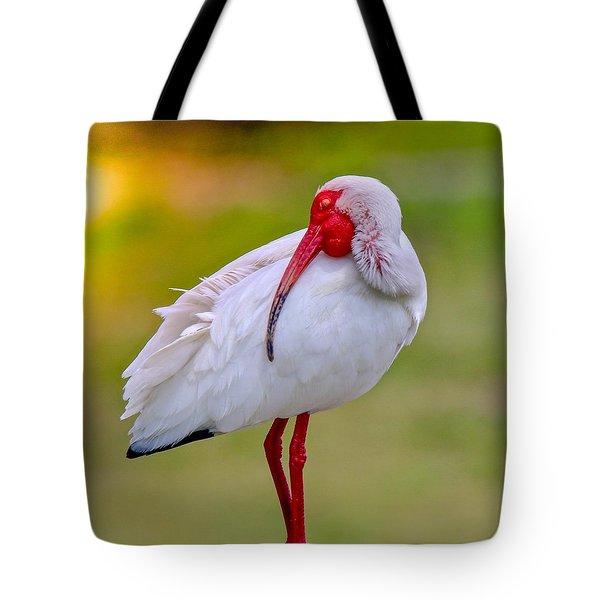 Sleepy Ibis Tote Bag