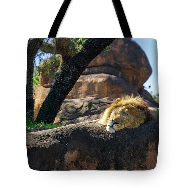 Sleepy Lion Tote Bag