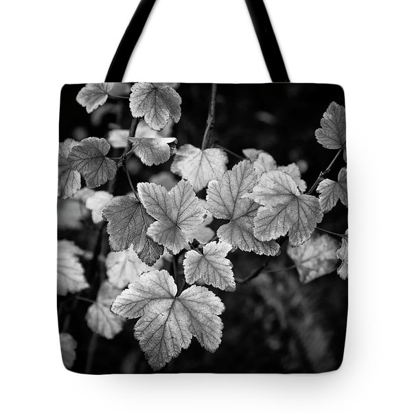 Slipping Into Fall Tote Bag