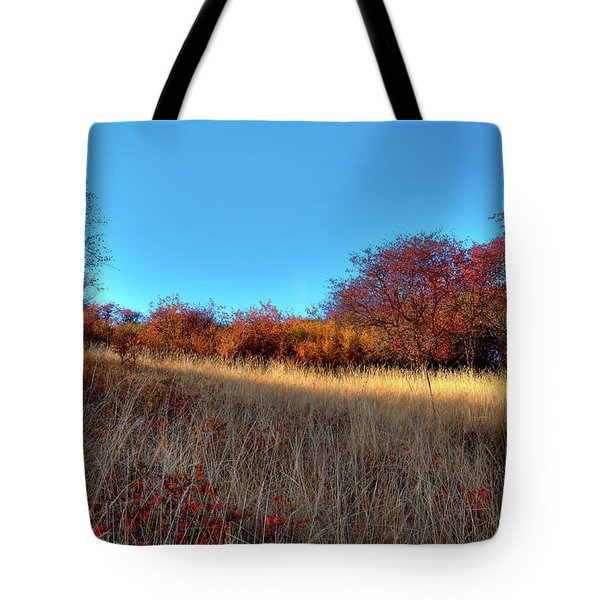 Tote Bag featuring the photograph Sliver Of Sunlight by David Patterson