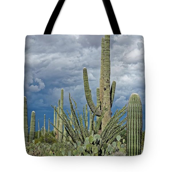 Slow Pokes - Sonoran Desert Tote Bag