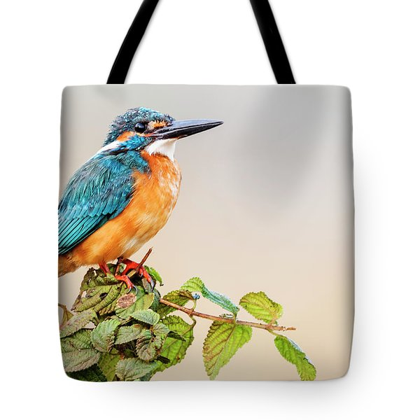 Small Blue Kingfisher Tote Bag