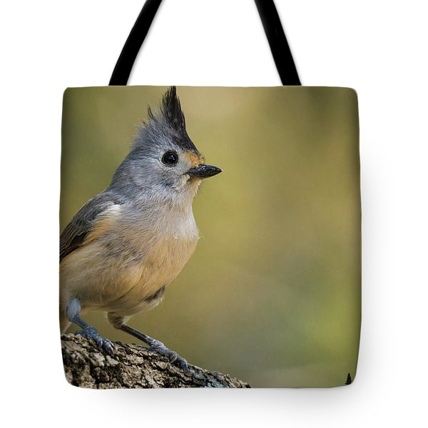 Small Titmouse Tote Bag
