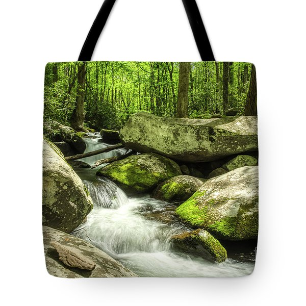 Tote Bag featuring the photograph Smoky Mountains In Spring by Mel Steinhauer