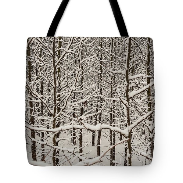 Tote Bag featuring the photograph Snow Covered Trees by Louis Dallara